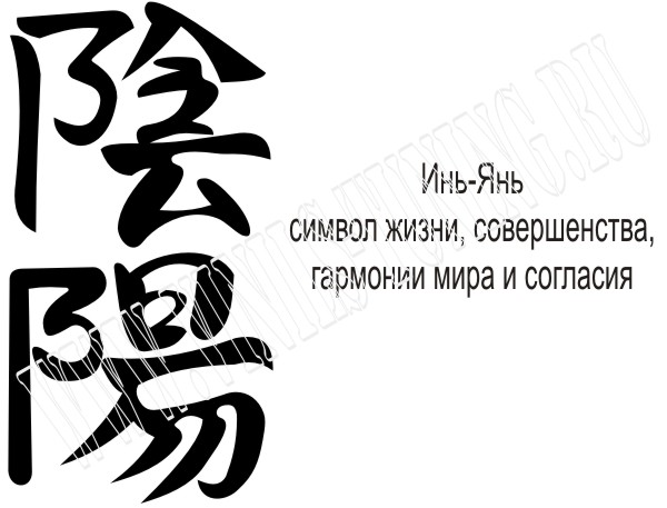 �������� �� ���� � ������ �������� ��������� >> TradeDir.Ru ...
